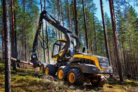 Почти в два раза выросли налоговые отчисления от предприятий лесного комплекса Карелии в 2018 году