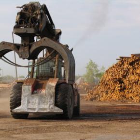 До 2022 г. в Югре планируют запустить многопрофильное деревообрабатывающее производство