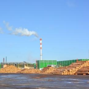 На Пестовском ЛПК запустят линию по распиловке толстомерных лесоматериалов