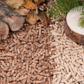 В Белоруссии инвестируют €21 млн в создание нового лесопильно-пеллетного производства