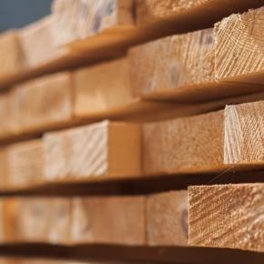 В Беларуси открыли новый цех по выпуску пиломатериалов до 700 кубометров ежемесячно