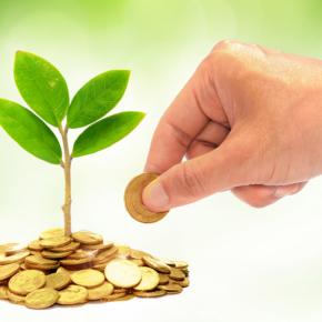 В Минприроды РФ планируют увеличить поступления от экосбора до 136 млрд руб.