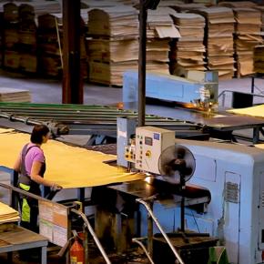 На фанерном заводе UPM Чудово запущены новые мощности