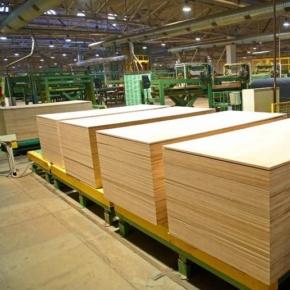 ООО «Плитвуд» (Вохтога, Вологодская обл.) начал проектирование нового завода по производству большеформатной берёзовой фанеры