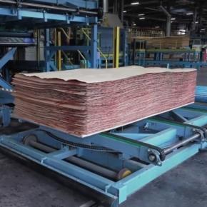 Вятский ФК в ближайшее время планирует производство пяти новых видов фанеры