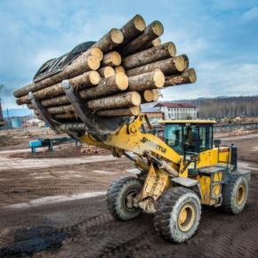 Губернатор Хабаровского края предложил сократить льготы для лесозаготовителей