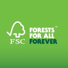 Площади FSC-сертифицированных лесов в России достигли рекордных исторических значений