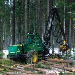 Глава Коми: объёмы заготовки древесины в республике вырастут до 11 млн м3