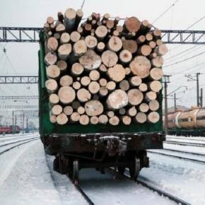 В России погрузка лесных грузов по ж/д сокращается рекордными темпами
