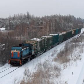 В 2020 г. «Свеза Кострома» в рамках инвестпроекта закупит 50 ж/д платформ для доставки сырья стоимостью 150 млн руб.