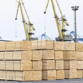 В 2019 г. экспорт пиломатериалов из России в Китай превысил 20 млн м3