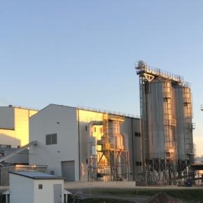 Prodesa построит два завода по производству древесных пеллет в Беларуси (вблизи городов Витебск и Полоцк) мощностью 20 тонн в час каждый