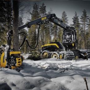 В Финляндии в марте 2020 г. сократился объём лесозаготовки