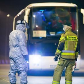 Мировые ЛПК во время пандемии: Польша
