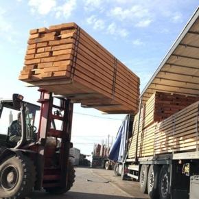Российские лесоэкспортеры указывают на трудности из-за отмены временного таможенного декларирования древесины