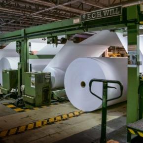В 1 кв. 2020 г. продажи Сокольского ЦБК выросли на 8,7% до 295,2 млн руб.