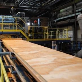 Россия сократила производство древесных плит в 1 пол. 2020 г.
