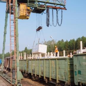 Россия: экспорт продукции глубокой переработки древесины начинает превалировать над сырьем