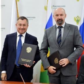 СПбМТСБ и Рослесхоз договорились об информационном взаимодействии