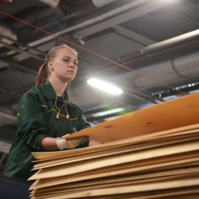 Россия сократила производство древесных плит в январе-июле 2020 г.