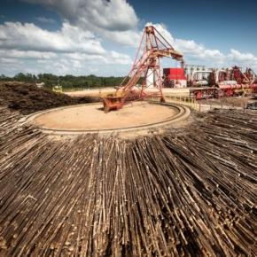 Германия сообщает о рекордном производстве древесных пеллет в 1 пол. 2020 г.