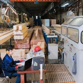 Пермский ДСК планирует запуск производства фанеры