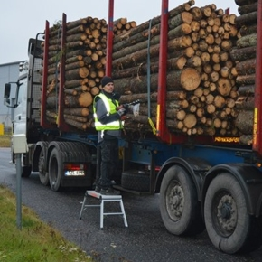 Финляндия увеличила импорт древесины на 12% в 1 пол. 2020