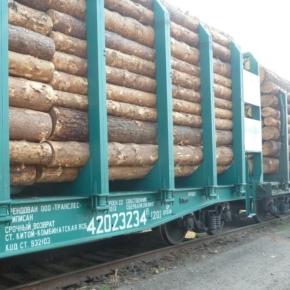 В 3 кв. 2020 г. перевозка лесных грузов железнодорожным транспортом увеличилась на 4%