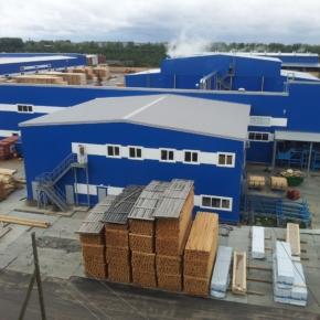 «Лесозавод 25» увеличил объём производства пиломатериалов до 750 тыс. м³
