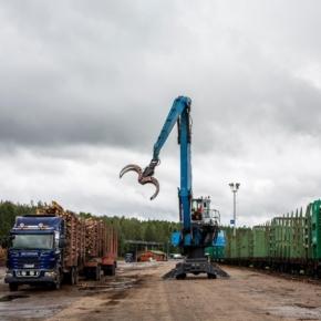 Российский экспорт лиственных круглых лесоматериалов в Финляндию