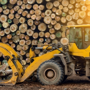 Доля 100 крупнейших компаний российского ЛПК в общем объеме выручки лесного сектора