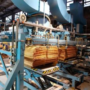 Россия сократила производство древесных плит в январе-октябре 2020 г.