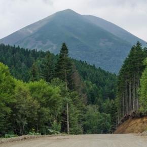 В Сахалинской обл. планируется строительство крупного лесопромышленного комплекса