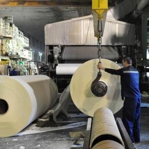 В январе-октябре 2020 г. производство целлюлозы в России выросло на 6,8%