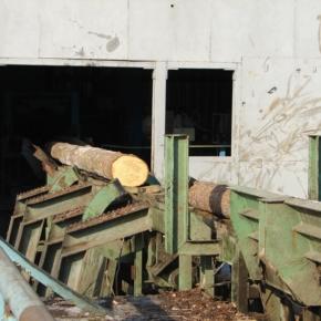 «Череповецлес» модернизирует линию лесопиления и окорки на заводе в Белозёрске (Вологодская обл.)