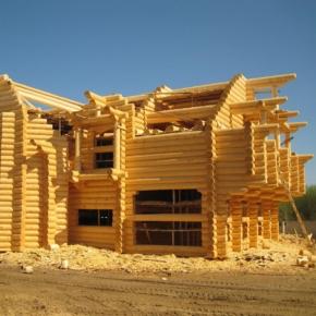 Владимир Путин поручил разработать меры по развитию деревянного домостроения в России