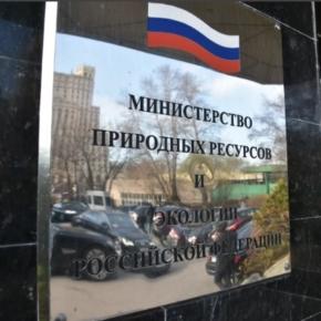 Минприроды РФ предлагает перенести на федеральный уровень полномочия по предоставлению лесных участков в аренду