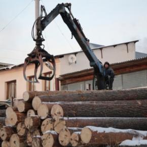 В Ульяновской обл. инвестируют 100 млн руб. в деревообрабатывающее производство