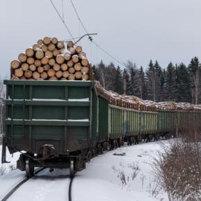 В декабре 2020 г. российский экспорт круглых лесоматериалов в Финляндию достиг пика с лета 2007 г.
