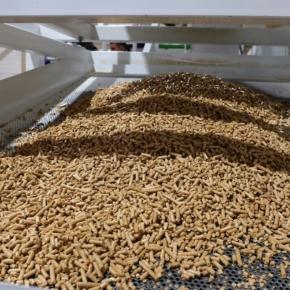 ФРП одобрил займ «Рустранс ДВ» на увеличение объёмов производства пеллет