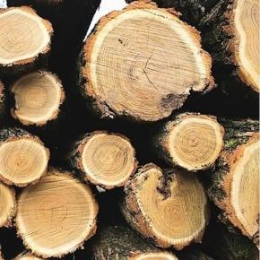 В 2020 г. снизились цены на лесосырьё в Швеции