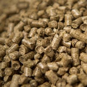 В апреле 2021 г. средняя цена тонны пеллет в Германии снизилась на 7,8%