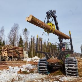 WhatWood: сильный спрос и локальная нехватка сырья, ознаменовавшиеся с 3 кв. 2020 г. начала подстёгивать рост цен на круглые лесоматериалы