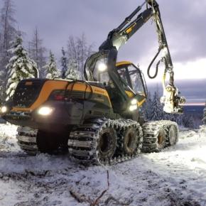 В феврале 2021 г. Финляндия увеличила лесозаготовку на 28%