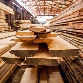 Правительство РФ вводит пошлины на экспорт лесоматериалов с уровнем влажности, превышающим 22%