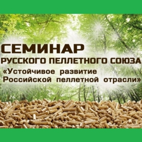 Агентство WhatWood приняло участие в онлайн-семинаре Русского Пеллетного Союза «Устойчивое развитие Российской пеллетной отрасли»