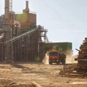 ООО «Сбербанк инвестиции» планируетвложить в «Томлесдрев» 15 млрд руб.