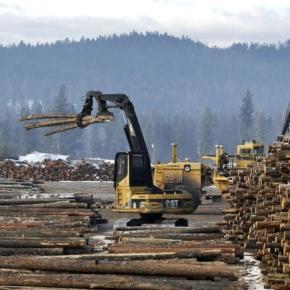 В Респ. Коми инвестируют 31,1 млн руб. в модернизацию лесопильного производства