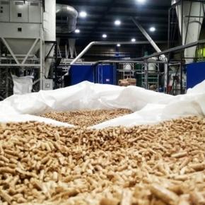 Объем производства российских пеллет продолжает расти высокими темпами