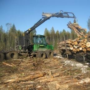В 1 кв. 2021 г. ГК «Вологодские лесопромышленники» увеличила лесозаготовку на 26,5%